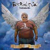 Letra Fatboy Slim - Don't Let The Man Get You Down