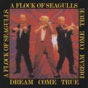 Letra A Flock Of Seagulls - Who's That Girl (She's Got It)